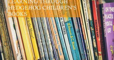 Learning Through Hedgehog Children's Book Photo by Robyn Budlenderr on Unsplash
